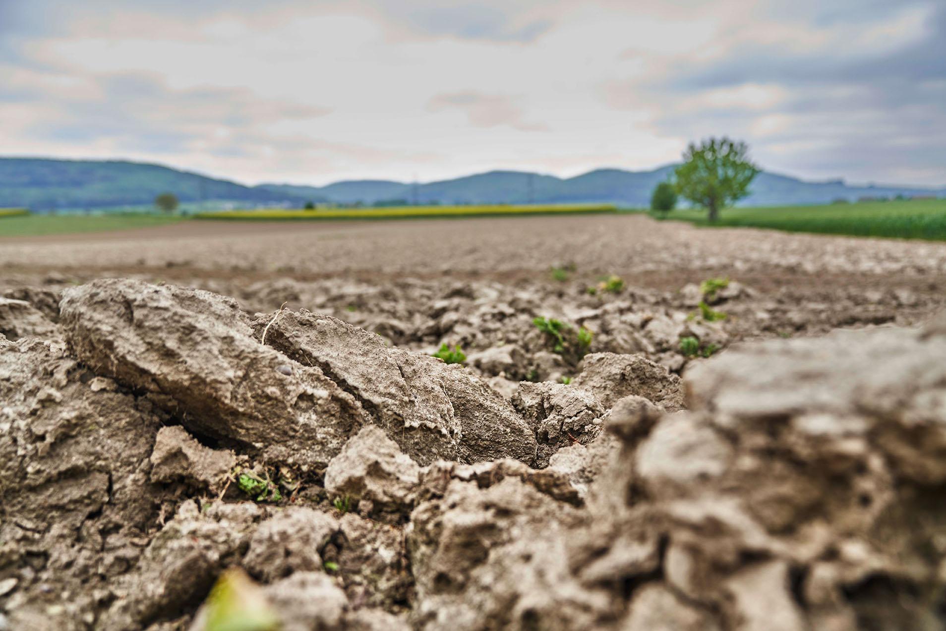 Dieses Label steht für Natürlichkeit, Nachhaltigkeit und Frische. Schweizer Landwirte, die ihre Erzeugnisse mit «Suisse Garantie» bezeichnen möchten, unterliegen strengsten Richtlinien. So etwa müssen sie eine ausgeglichene Düngerbilanz vorweisen und einen ökologischen Leistungsnachweis erbringen. Gentechnisch veränderte Organismen, leistungsfördernde Hormone und Antibiotika sind verboten.